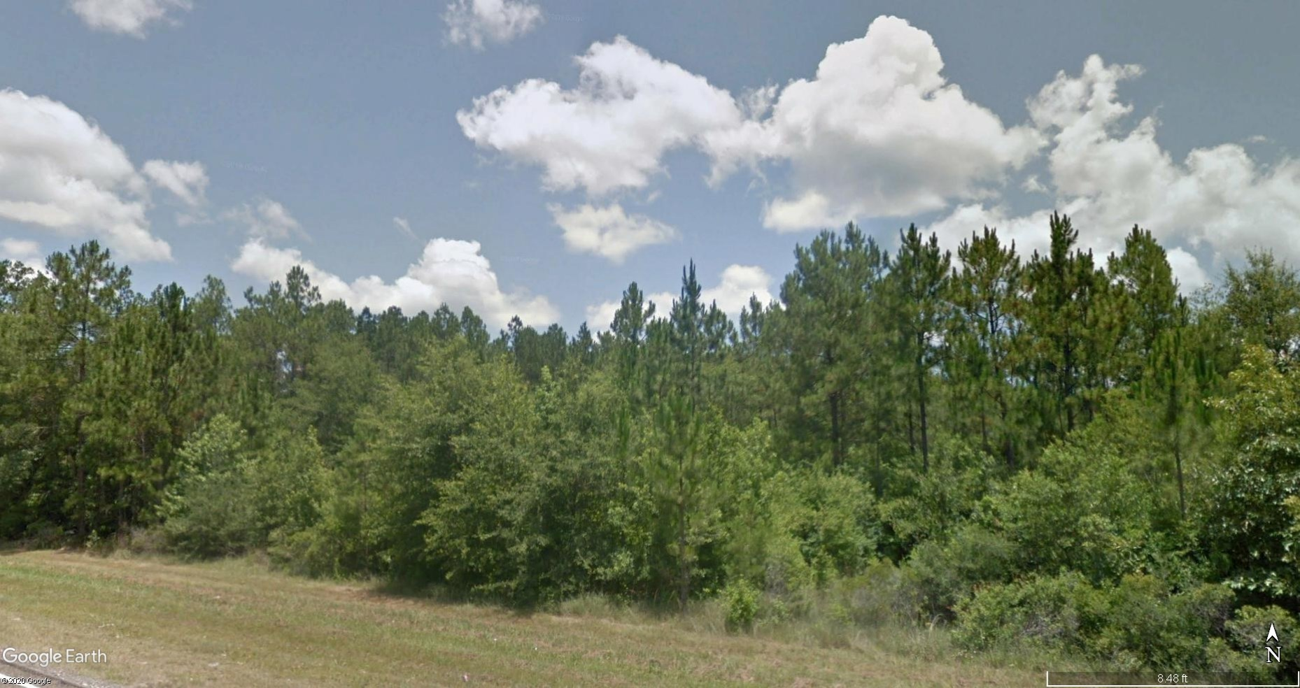 220.9 ACRES HUNTING TIMBER LAND FOR SALE NEAR KOUNTZE TEXAS