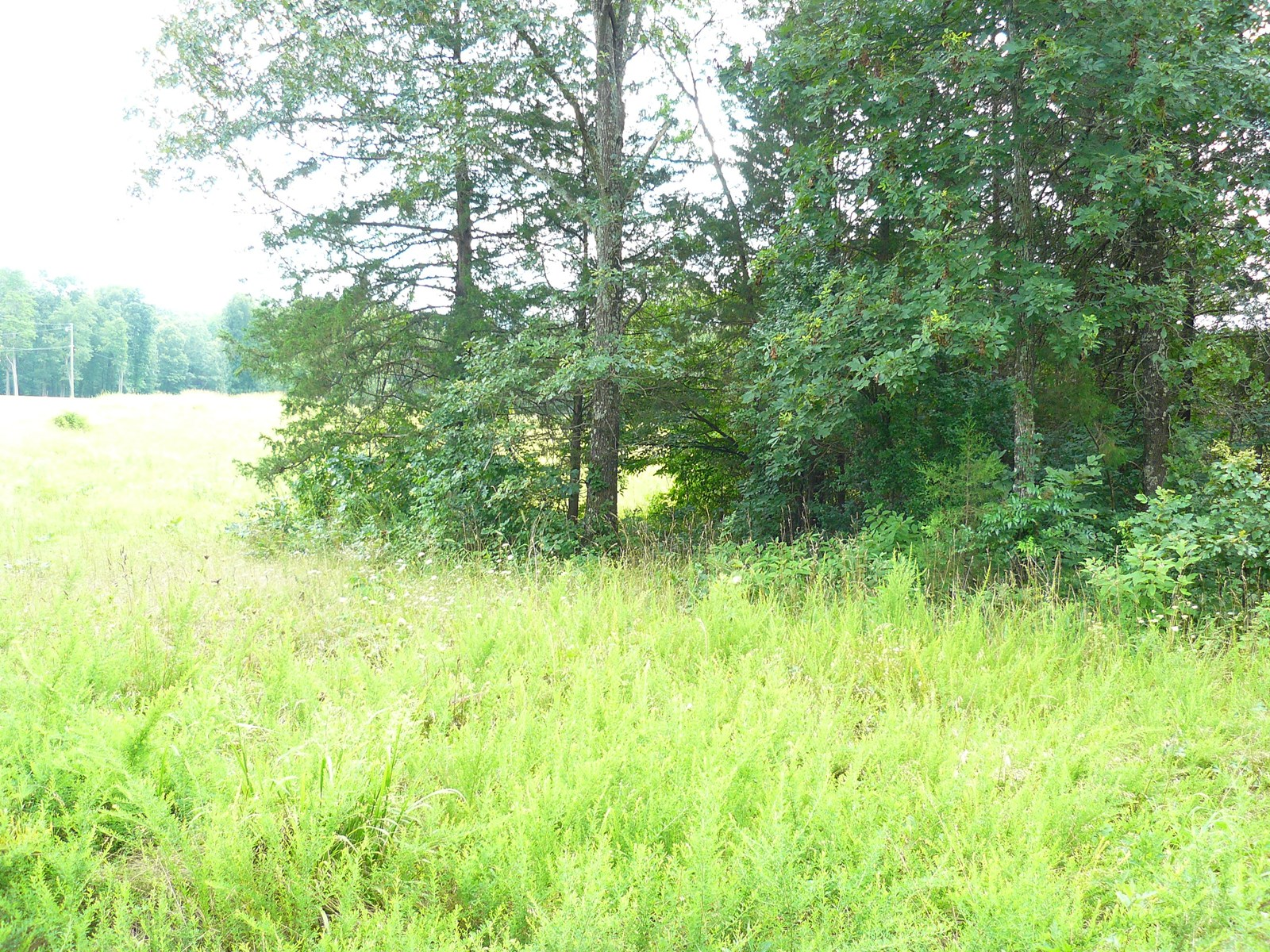 01682 BUILDING LOT FOR SALE NEAR MOUNTAIN VIEW ARKANSAS