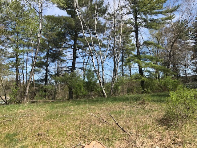 Vacant Lots For Sale on Hatch Lake Iola WI
