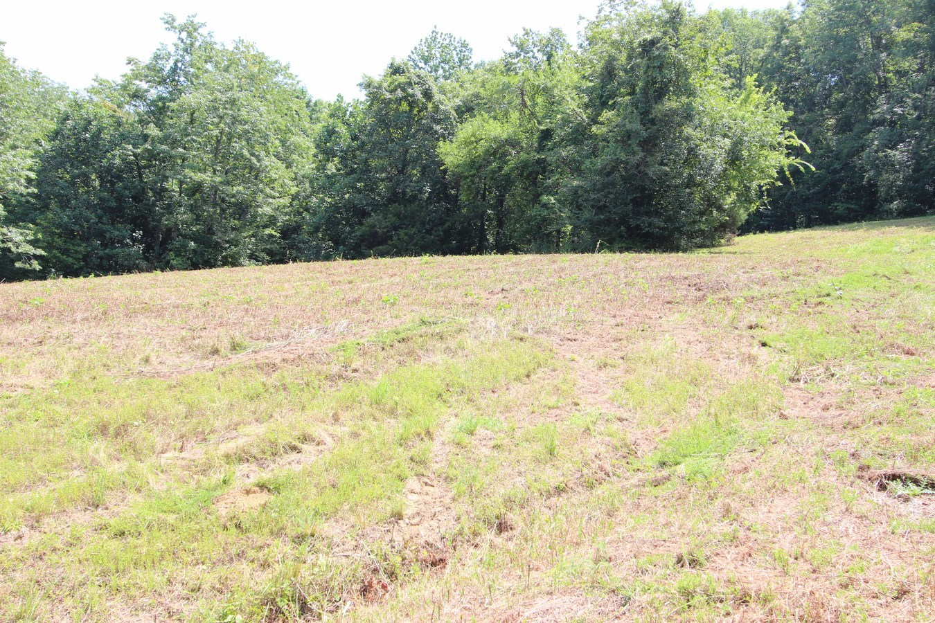 PULASKI, TN GILES COUNTY 7.80 ACRES LAND ONLY FOR SALE