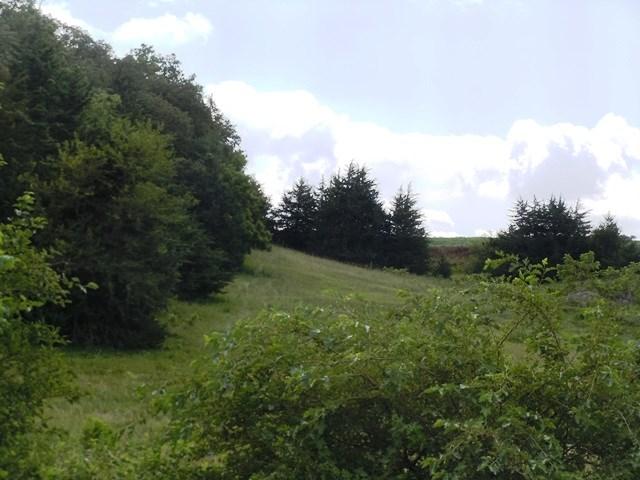 LAND FOR SALE, LOGAN, HARRISON COUNTY IOWA