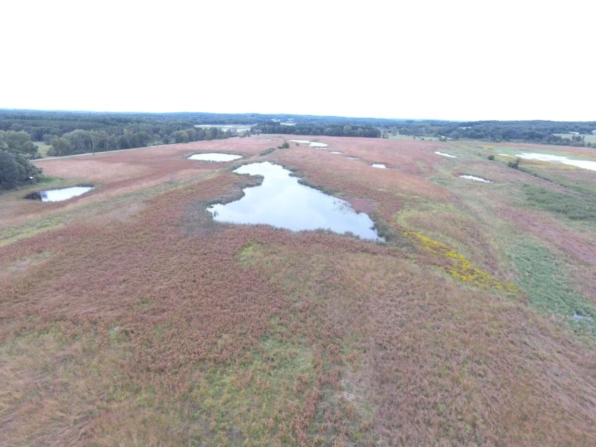 Waterfowl and Deer Hunting Land with Build Sites