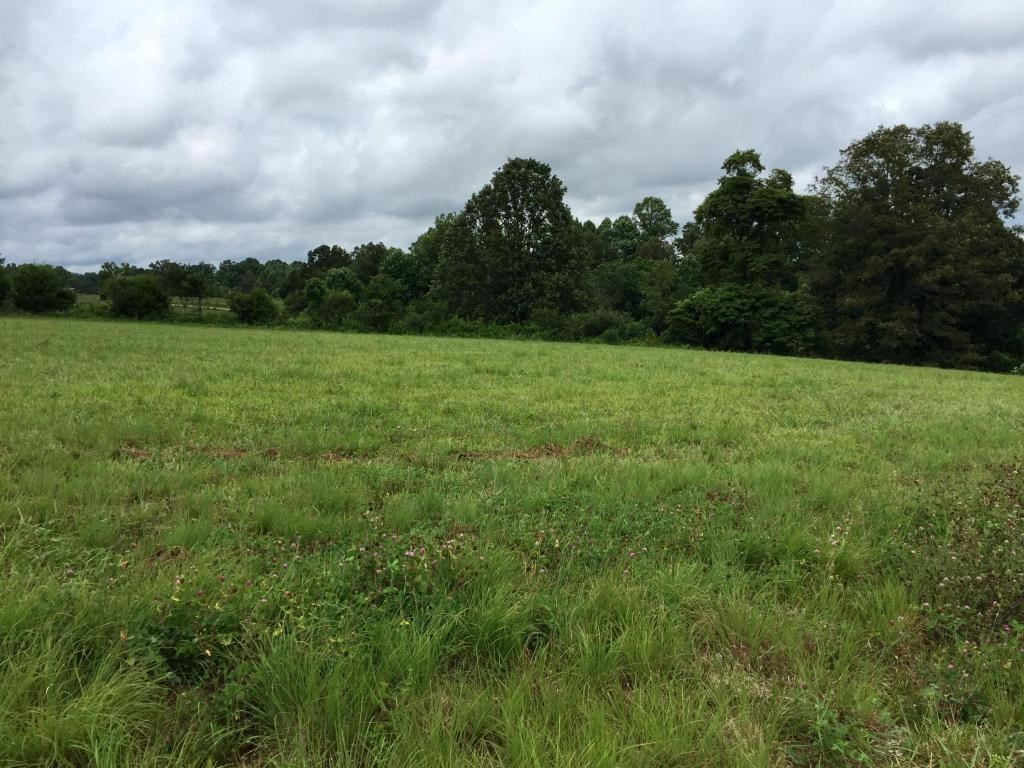 development land Cookeville TN, subdivision lot, Putnam Co