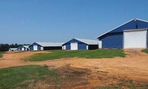 10 HOUSE BROILER FARM, MOUNT OLIVE, COVINGTON COUNTY