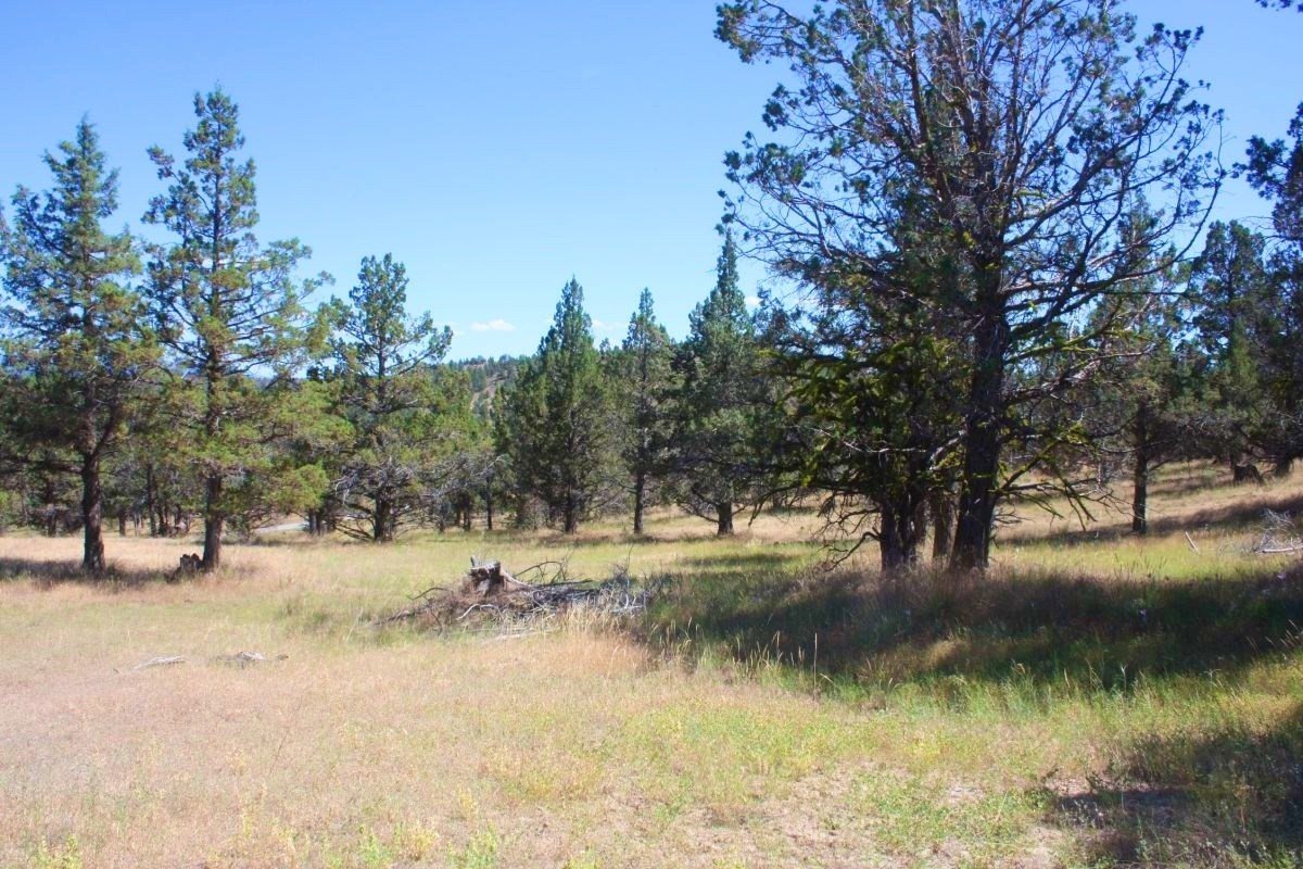 1.59 Acres Modoc County View Property for sale with Well & S