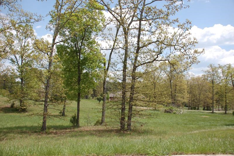 Woodridge Subdivision in West Plains - Half Acre Lots