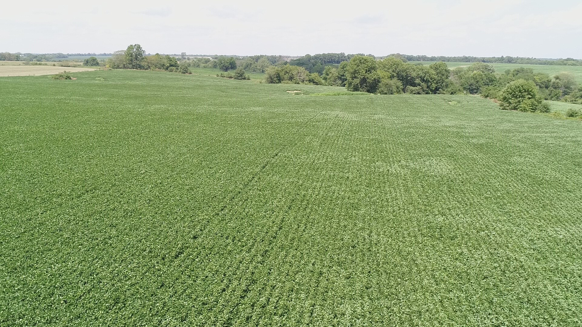 NORTHEAST MO ROW CROP FARM FOR SALE, LAND FOR SALE MISSOURI