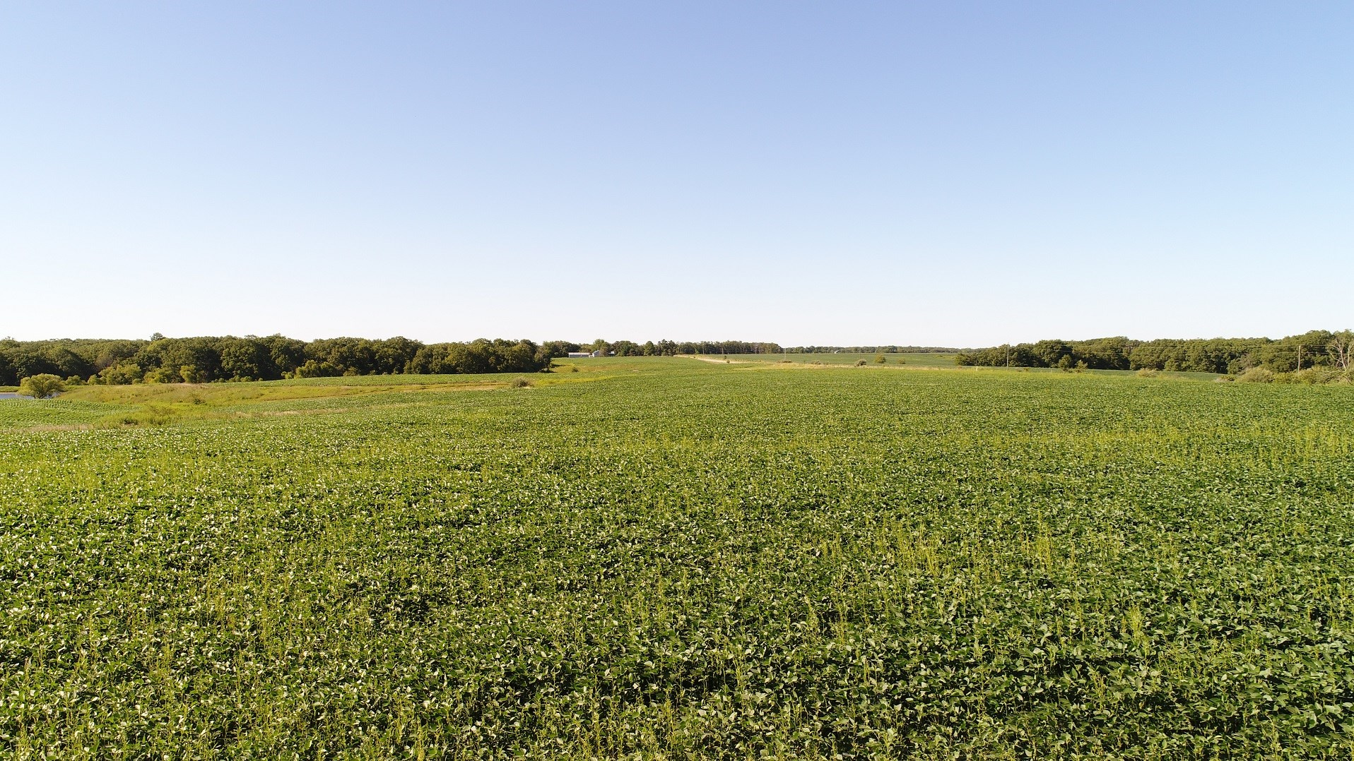 NORTHERN MO FARM FOR SALE, LEWIS COUNTY MO ROW CROP FARM