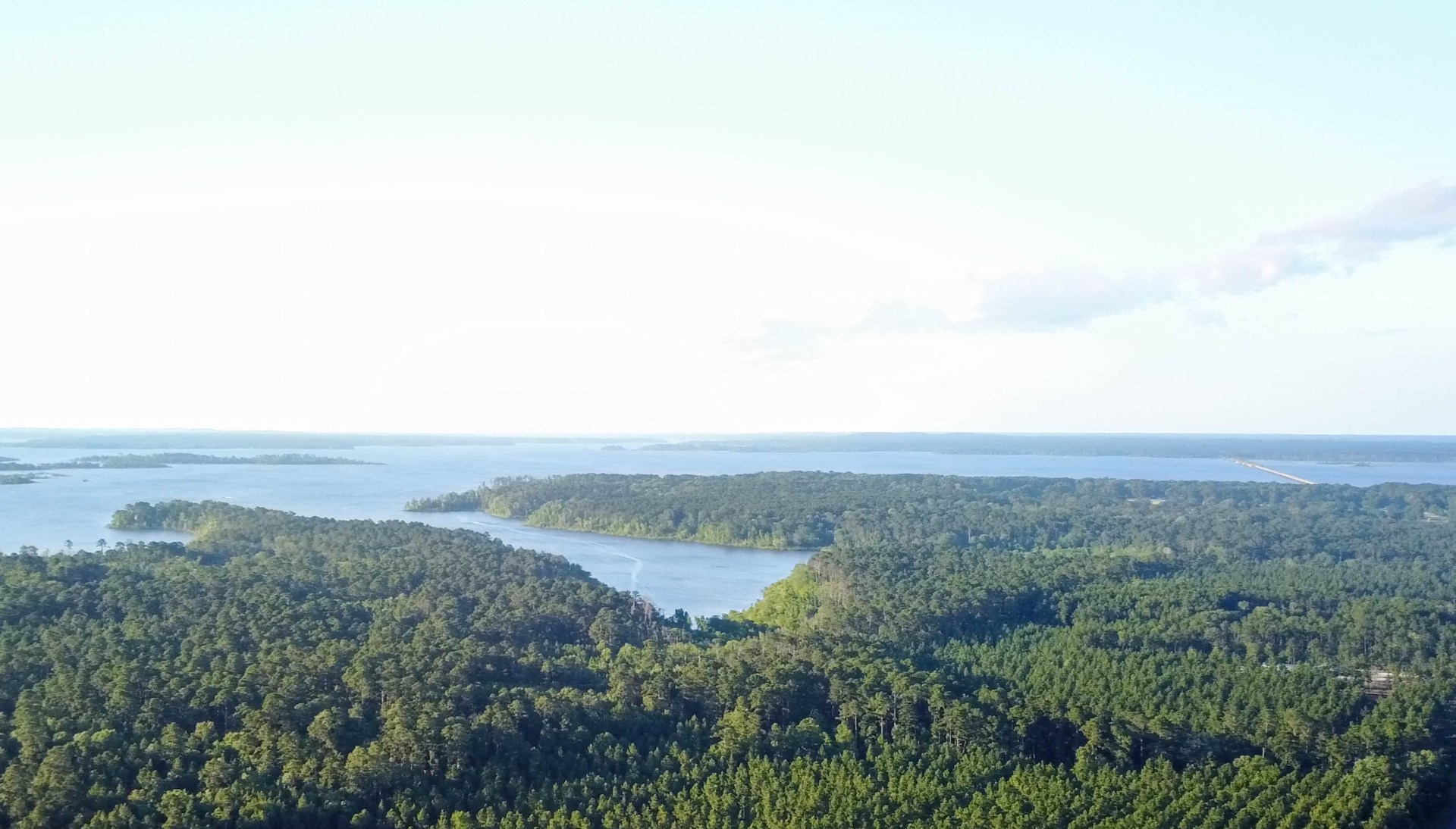5.6 ACRES LAKE SAM RAYBURN LAND FOR SALE | HWY 147 FRONTAGE