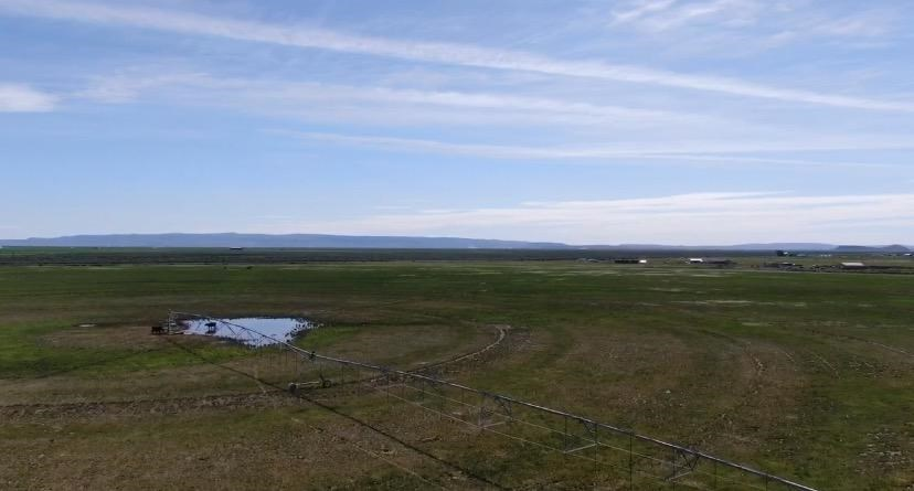BURNS, OR - 226 ACRE PASTURE - VALLEY PIVOT - WATER RIGHTS