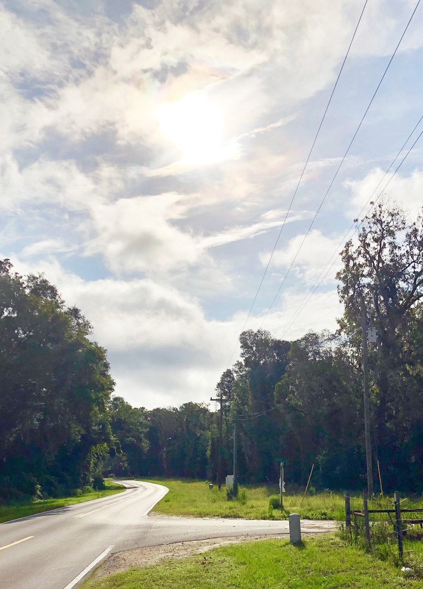 VACANT LAND FOR SALE IN NORTH FLORIDA