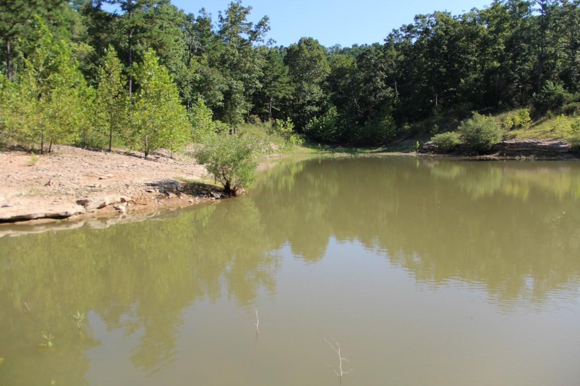 40 ac with WATER in Northwest,Arkansas
