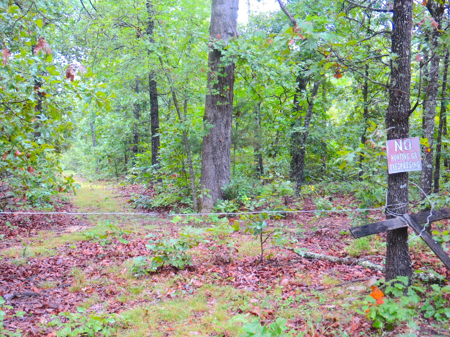 Farm For Sale in Pocahontas Arkansas