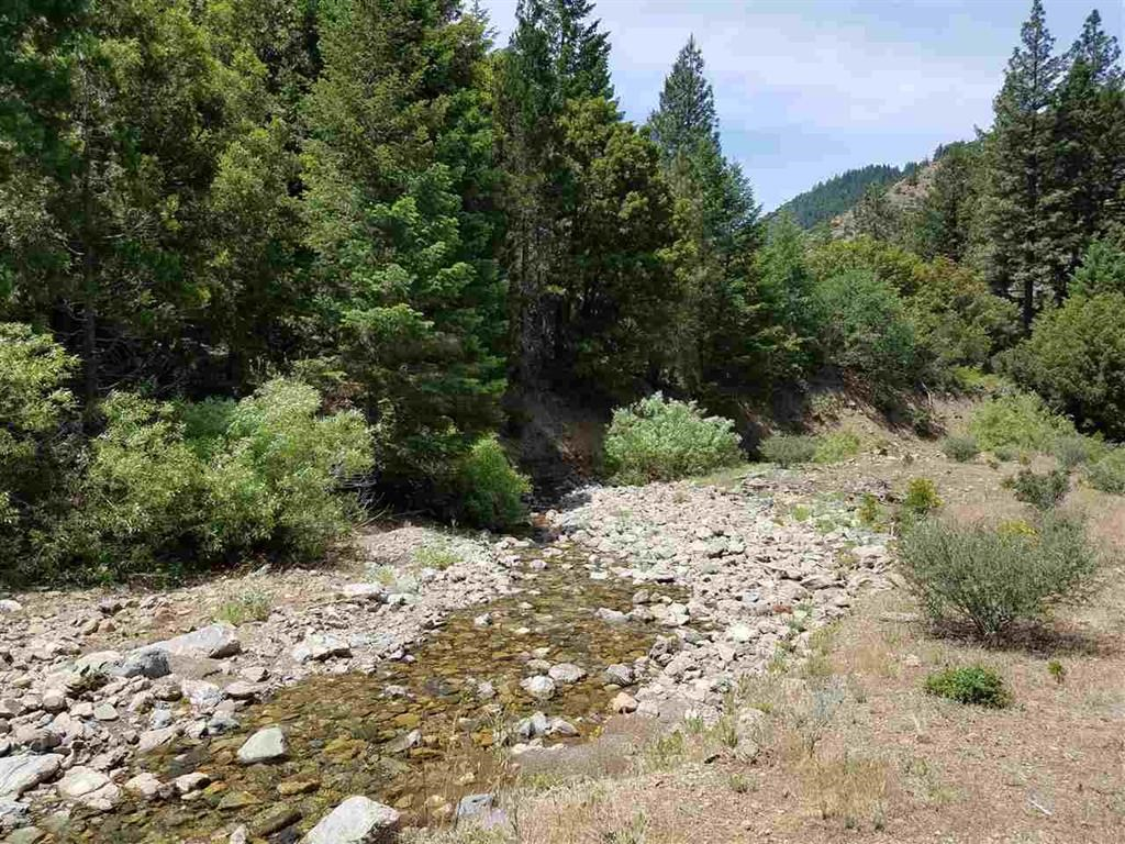 Cherry Hill Placer Mine For Sale