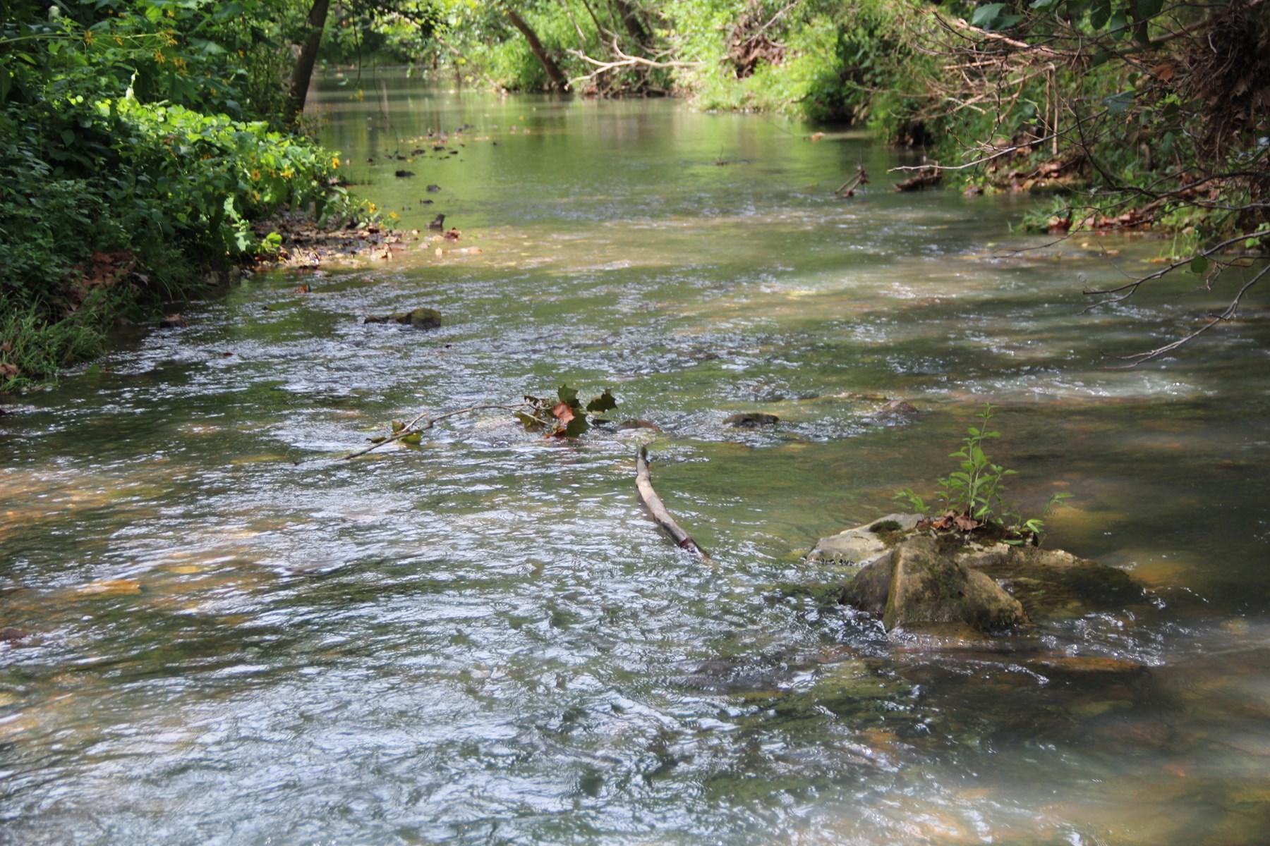 Dryfork creek