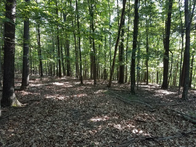 Land For Sale in Gerrardstown, WV