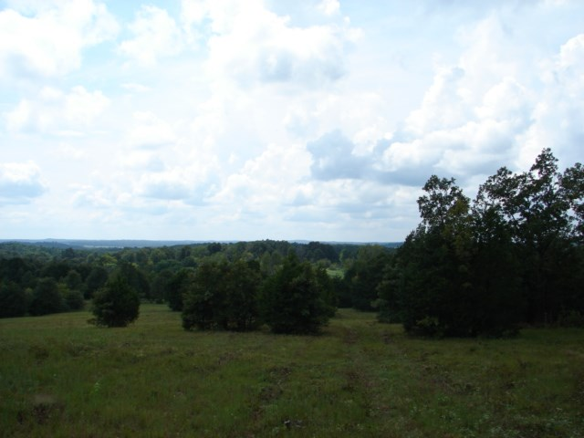 Ozarks Hilltop View with Southern Exposure for Sale