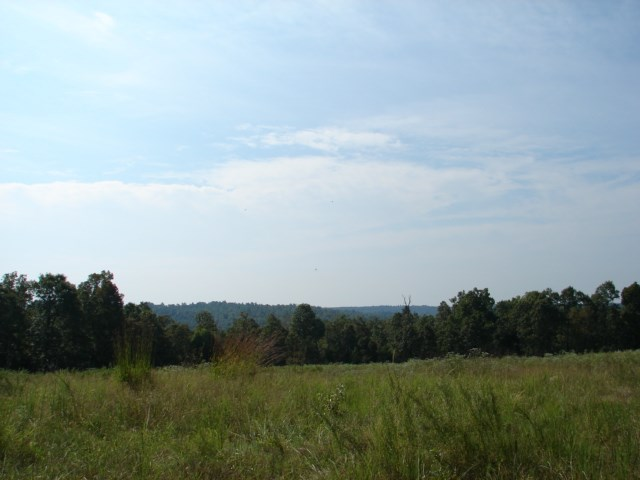 Arkansas Ozarks Property with southern exposure for sale