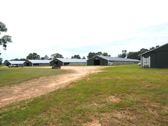Poultry Farm, 73 Acres Pasture Land, South Mississippi
