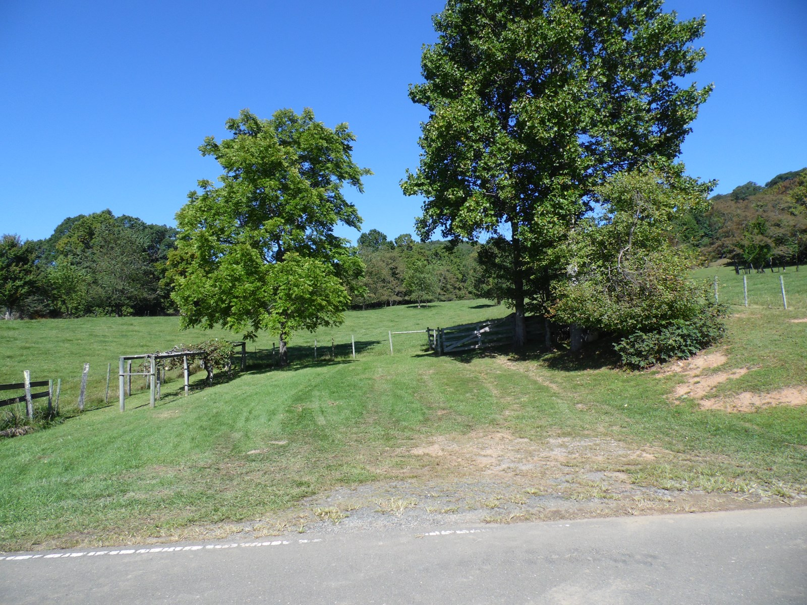 Beautiful Parcel of Gently Sloping 10 Acres +/- in Sparta NC