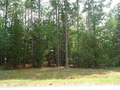 NICE .74 ACRE LOT FOR SALE ON LAKE MONTICELLO IN S.C.