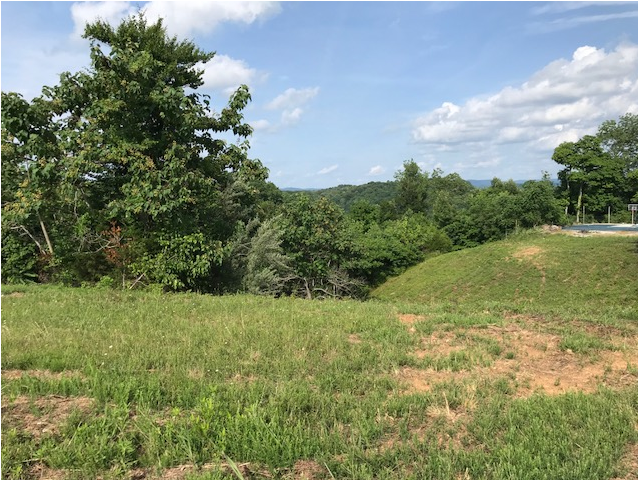 Albany, Kentucky land for sale overlooking Dale Hollow Lake.