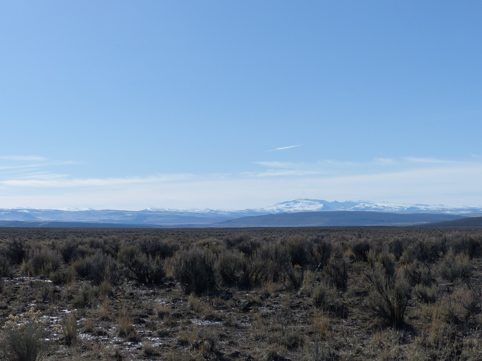 PRINCETON, OR - 158.19 ACRES - CLOSE TO DRY LAKE RESERVOIR