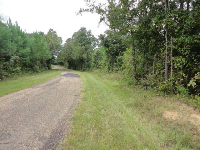 Land for Sale Hunting Copiah County Hazlehurst Mississippi