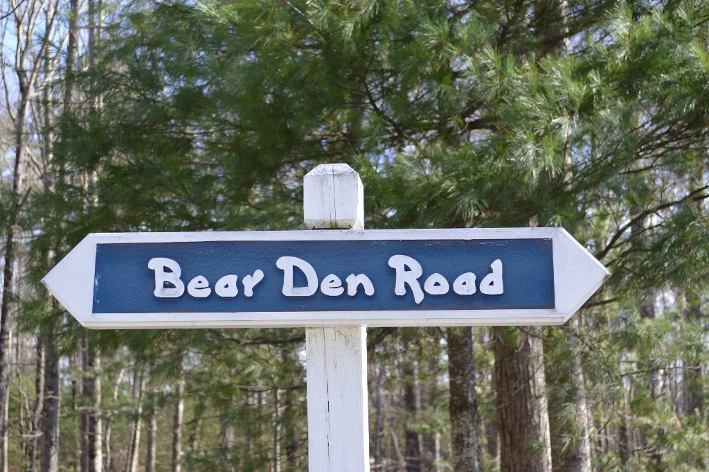 Nice Wooded Building Lot in Piney Creek, NC Blue Ridge