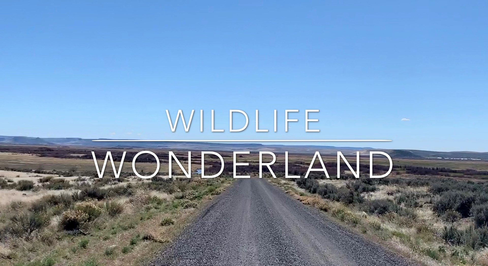 Wildlife Wonderland Boarding Refuge - 160 acres