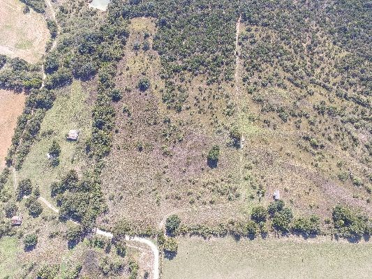 FOR SALE 99.750 ACRES IN TOLAR TEXAS