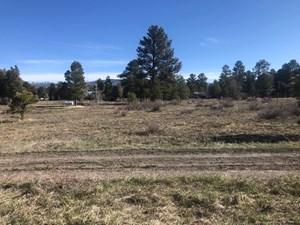 BEAUTIFUL SITE NEXT TO 20,000 ACRE WILDLIFE AREA CHAMA NM