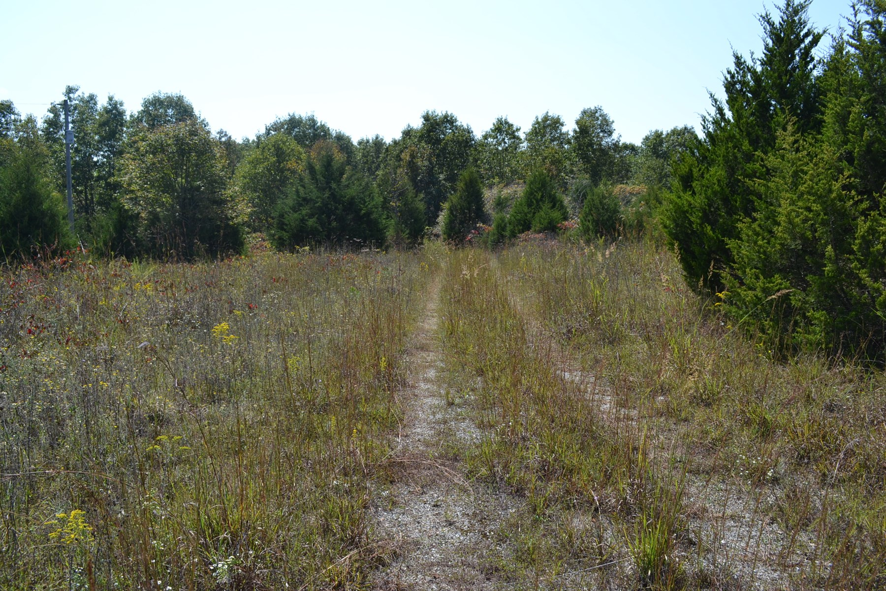50 Acres m/l - Private Well - Building Site