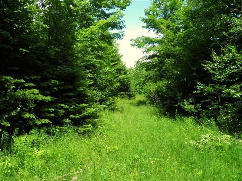 Maine Land for Sale in Benedicata