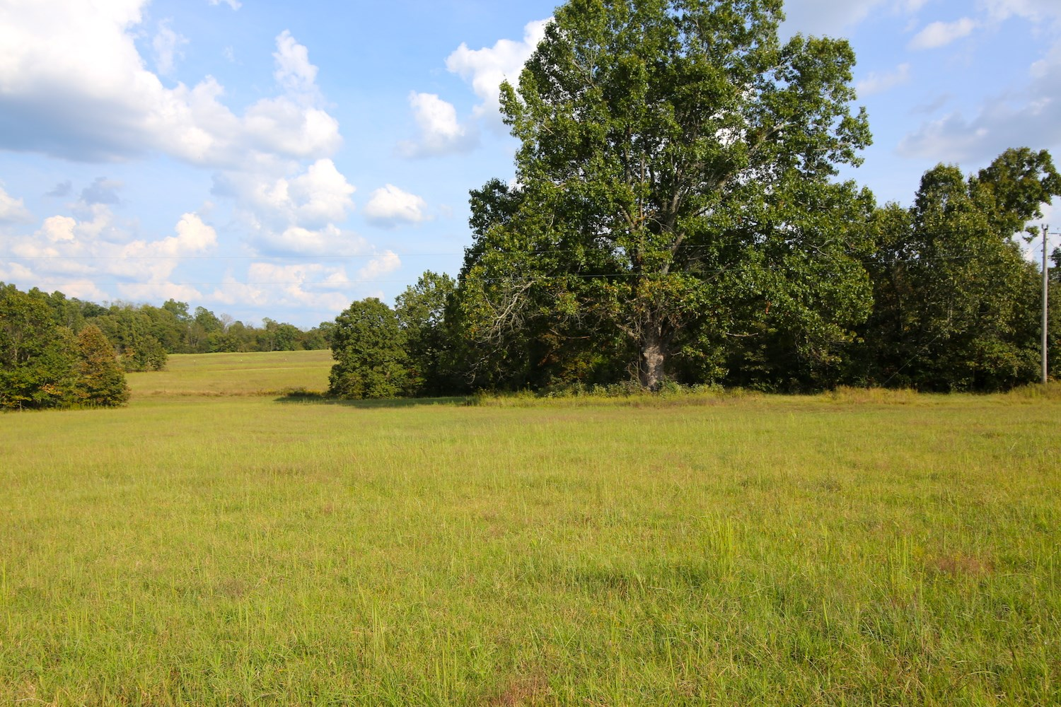 Vacant Land W/ Hay Fields & Marketable Timber For Sale in MO