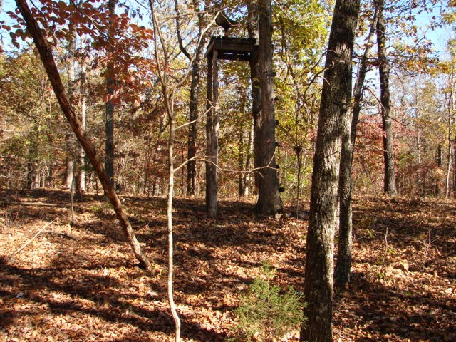 Arkansas Ozarks Hunting & Recreational Property for sale