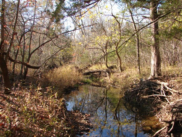Ozarks Hunting & Recreational Property for Sale-Viola, AR