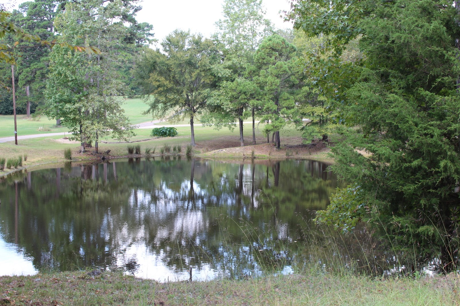 WATERFRONT ACREAGE IN EAST TEXAS - WOOD COUNTY TX