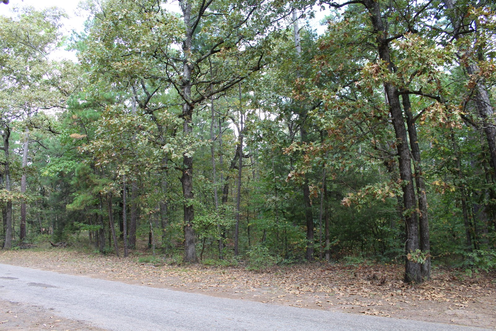 ALMOST 2 1/2 ACRES IN EAST TEXAS FOR SALE GATED WOOD COUNTY