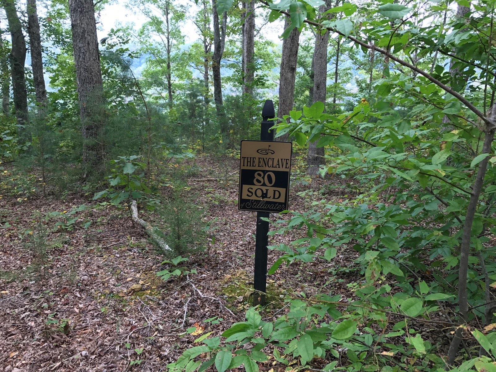 Land for sale, Russell Springs, Kentucky