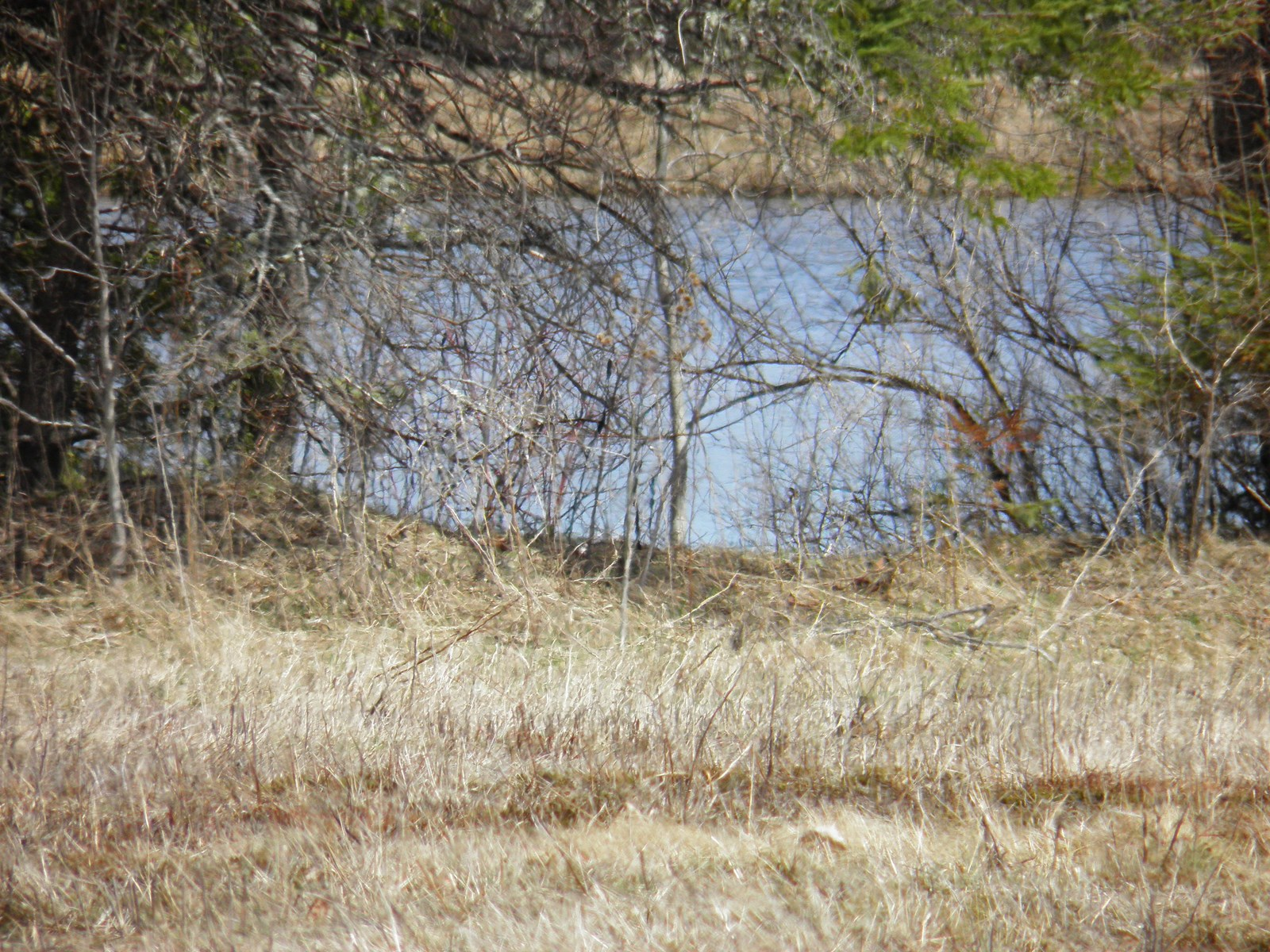 Maine Land For Sale In Sherman
