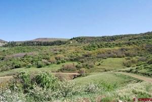 ELK HUNTING LAND FOR SALE NEAR TELLURIDE CO
