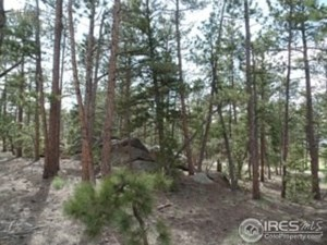 GOLF COURSE COMMUNITY LAND FOR SALE IN RED FEATHER LAKES, CO