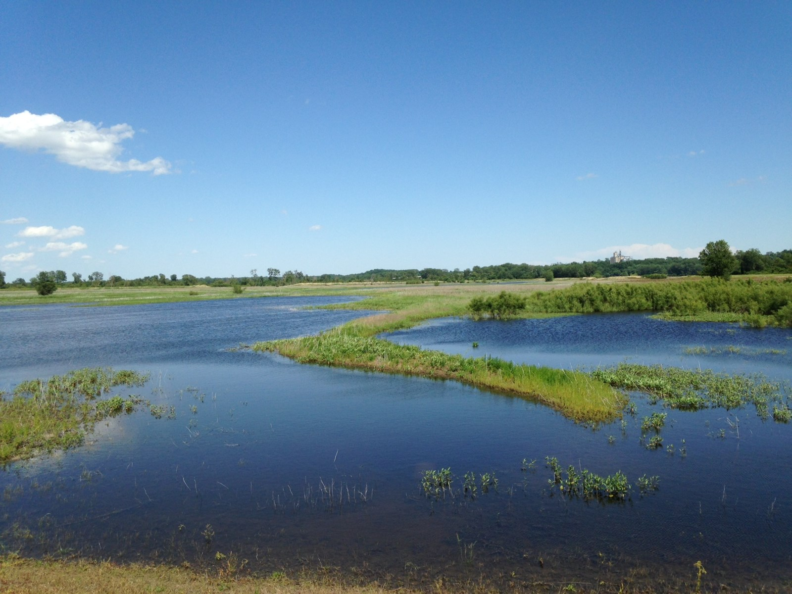 Land for Sale, Wetland / Hunting Riverfront Acreage in MO