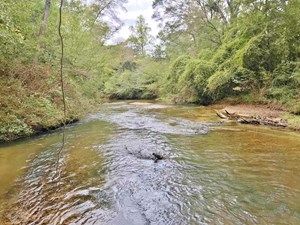 423 ACRES WATERFRONT HUNTING TIMBER LAND FOR SALE PIKE CO MS