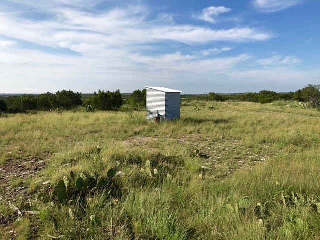 BEAUTIFUL RURAL ACREAGE AND PASTURE NEAR MERTZON, TEXAS