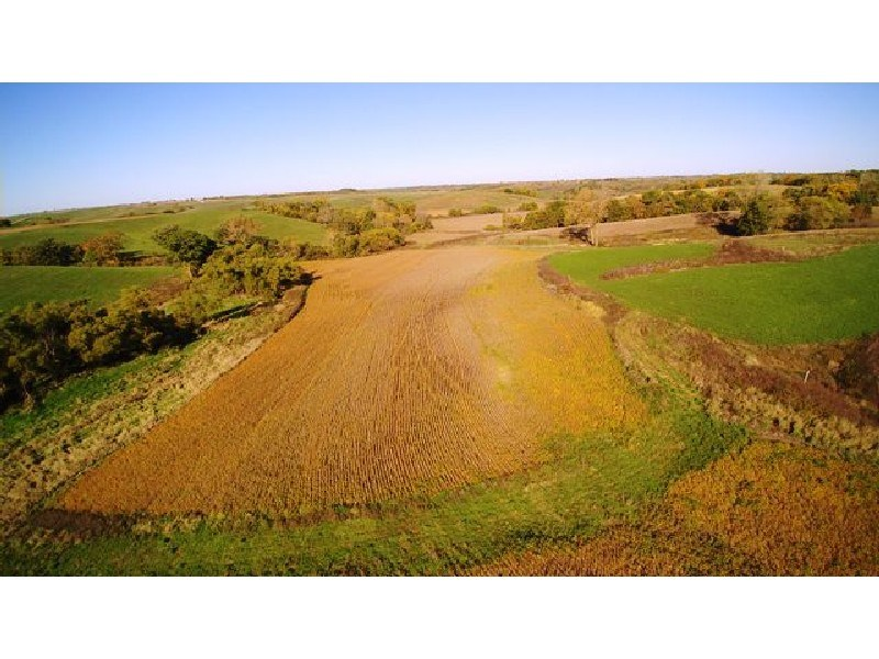 49 Acre Monroe County Crop and Hunting Property