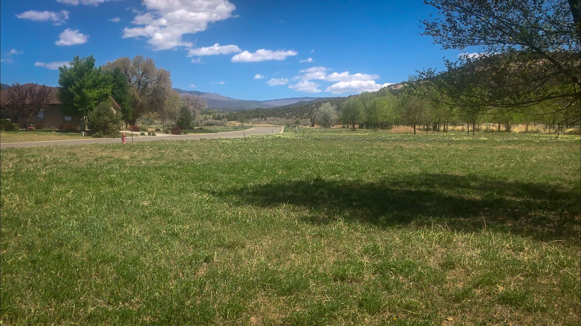 Golf Course Property for sale in Cedaredge Colorado