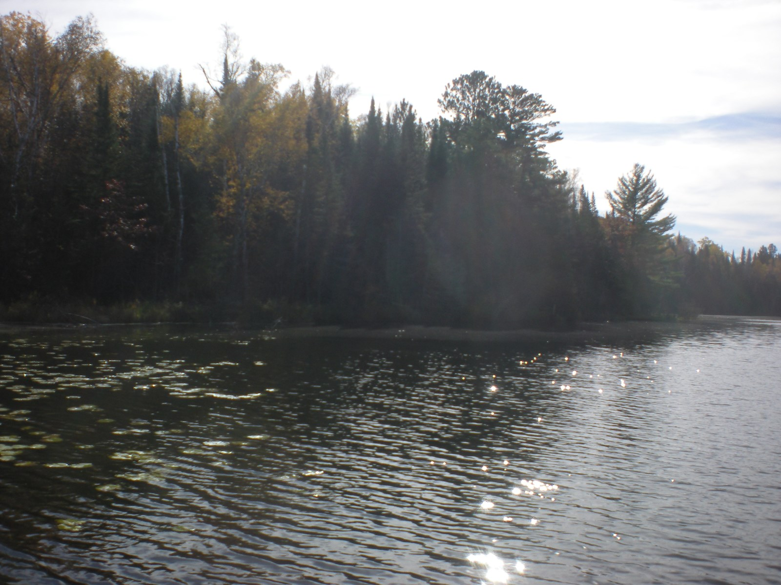 6 Ac Lake Lot For Sale, Private Coffee Lake In Moose Lake MN