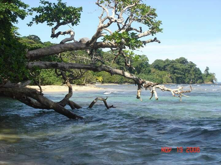 Bastimentos Beachfront Land, Old Point, Bocas del Toro